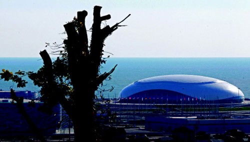 Вид на строительство ледового дворца «Большой» в Сочи. Апрель 2013 г.