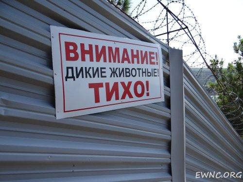 2014-07-22_Dacha-Tkacheva_DSC03077.preview