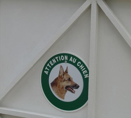 "Написано ""Внимание, собака"""