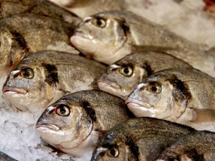 Цены на рыбу выросли в 1,5–2 раза как минимум Виктор . Погонцев/Russian Look