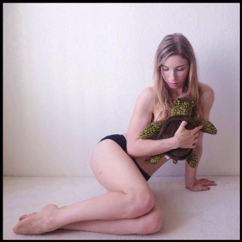 Lindsay-Mills-turtle