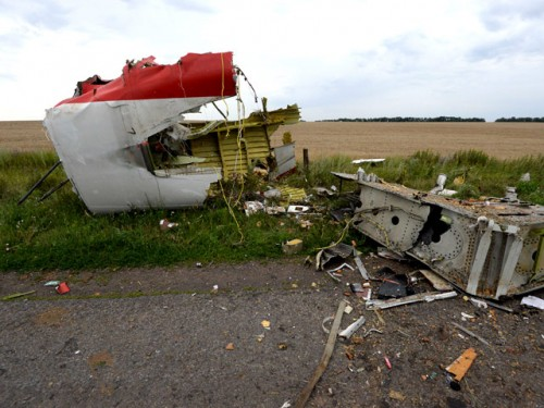 Место крушения самолета Боинг-777 в Донецкой области, 17 июля 2014 года. Фото Global Look Press