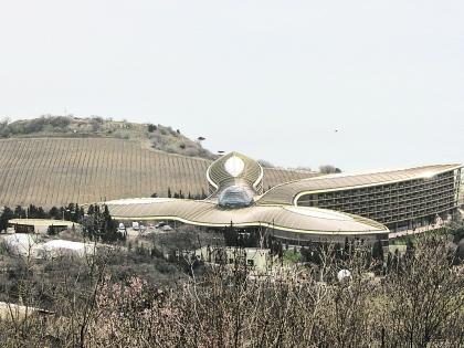 Участок по соседству с санаторием Сбербанка виноделам уже не принадлежит. Фото Собеседник/Лиана Налбандян