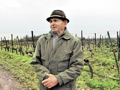 Александр Зеленский работал на этой земле больше 30 лет. Фото Собеседник/Лиана Налбандян