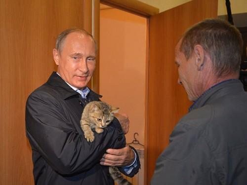 Путин оценил результаты восстановительных работ после весенних пожаров на примере всего одной деревни/Фото: Пресс-служба Президента России