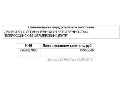 Данные о компании Фото: ЕГРЮЛ (Скриншот)