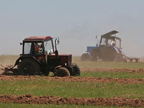 Хозяйства в Башкирии справные, но сама республика признана зоной рискованного земледелия. Фото: Наталия Губернаторова