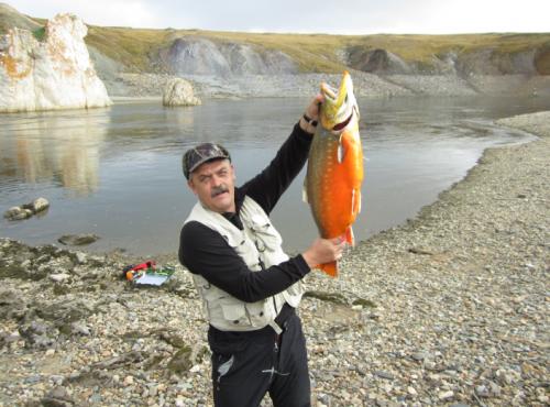 еловек, похожий на Александра Герасименко с рыбой, похожей на арктического гольца, включенного в Красную книгу. На фоне приметных скал, позволяющих установить, что фотография сделана в заповеднике «Таймырский»