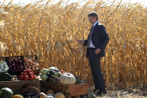 Министр сельского хозяйства Александр Ткачев (на фото) доказал правительству, что не оказывает никакого влияния на аграрный бизнес своих родственников, но за время его работы в министерстве этот бизнес заметно подрос Андрей Епихин / ТАСС