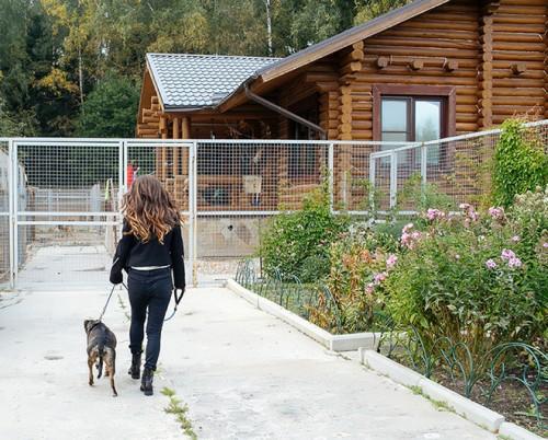 Карина Ротенберг и Олива направляются в «Лесной приют»