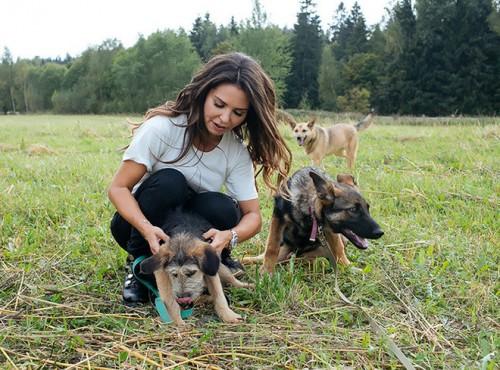 Все животные «Лесного приюта» очень дружелюбные: они сумели простить все плохое, что сделал им человек
